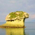 ischia-fungo-lacco