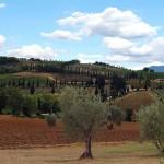 agriturismo-toscana-vacanze-pasqua