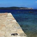 Alghero-vacanze-estate-2010