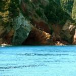 offerte-isola-d'elba