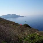 traghetti-Isola-del-giglio